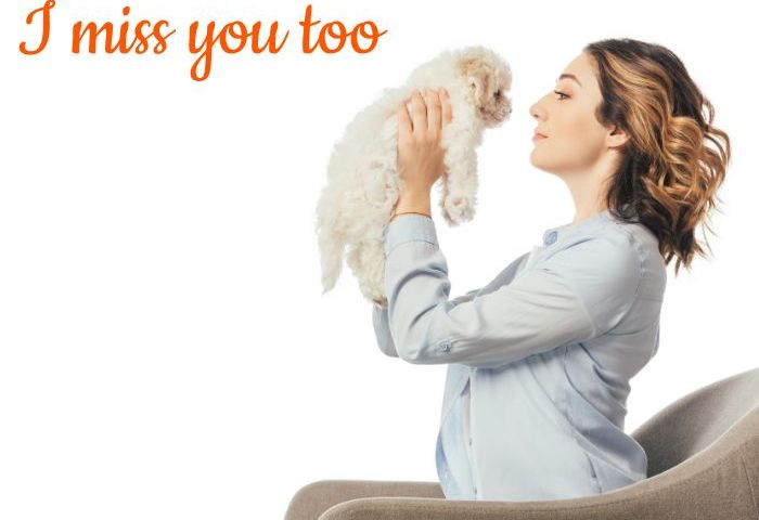 110+ I Miss You Too Meme With Quotes for Him/Her