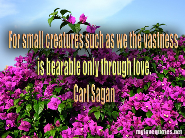 for small creatures such as we the vastness is bearable