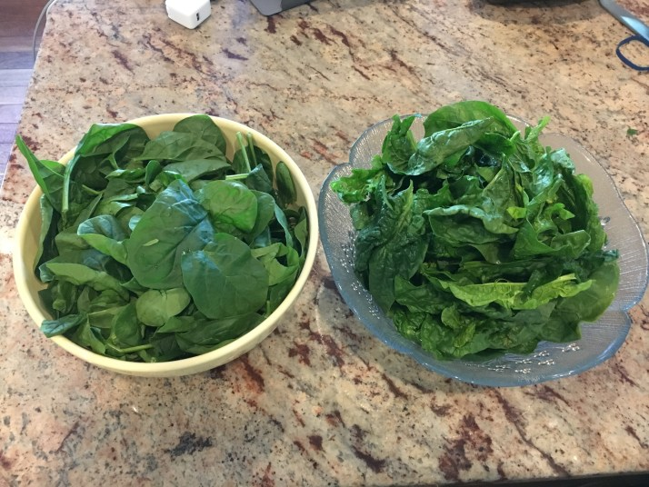 Bagged Spinach vs. Bunch Spinach