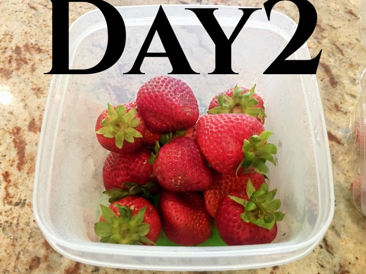 Day 2  the strawberries in the produce container showed no change. The strawberries in the original container still looked pretty good, with some discoloration.