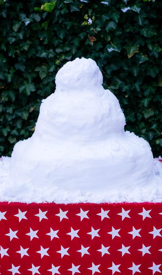 Sneeuw taart