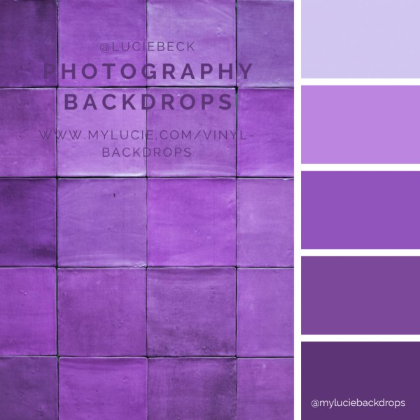 ML647-purple.jpg