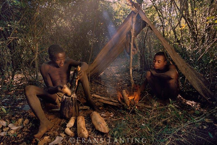 Mikea Madagascar