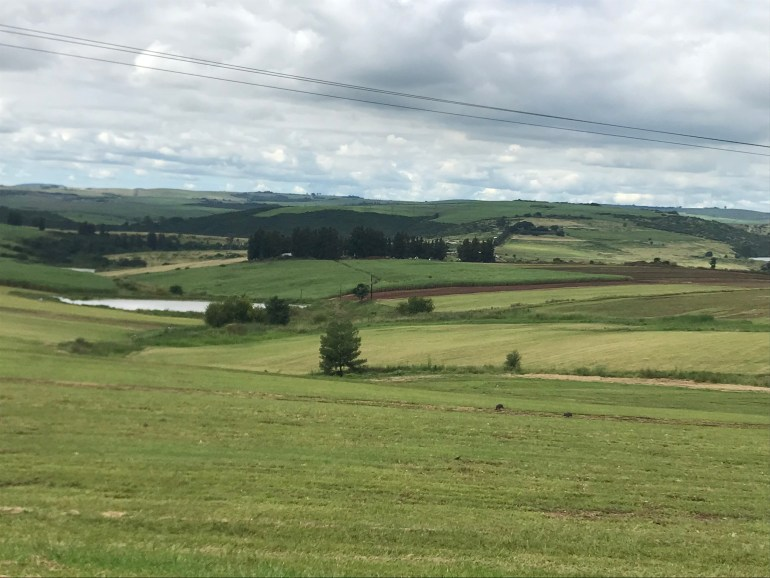 An overnight trip on the Midlands Meander - The rolling hills and many shades of green