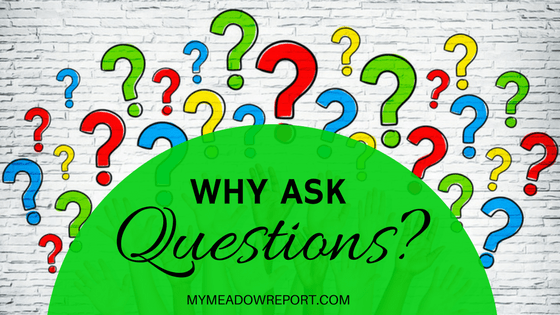 Why Ask Questions?