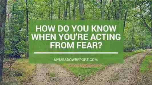 How Do You Know When You're Acting From Fear?