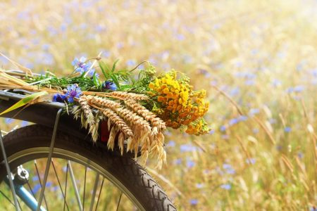 Summer Solstice and Living On Purpose