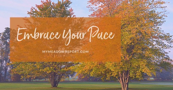 embrace your pace
