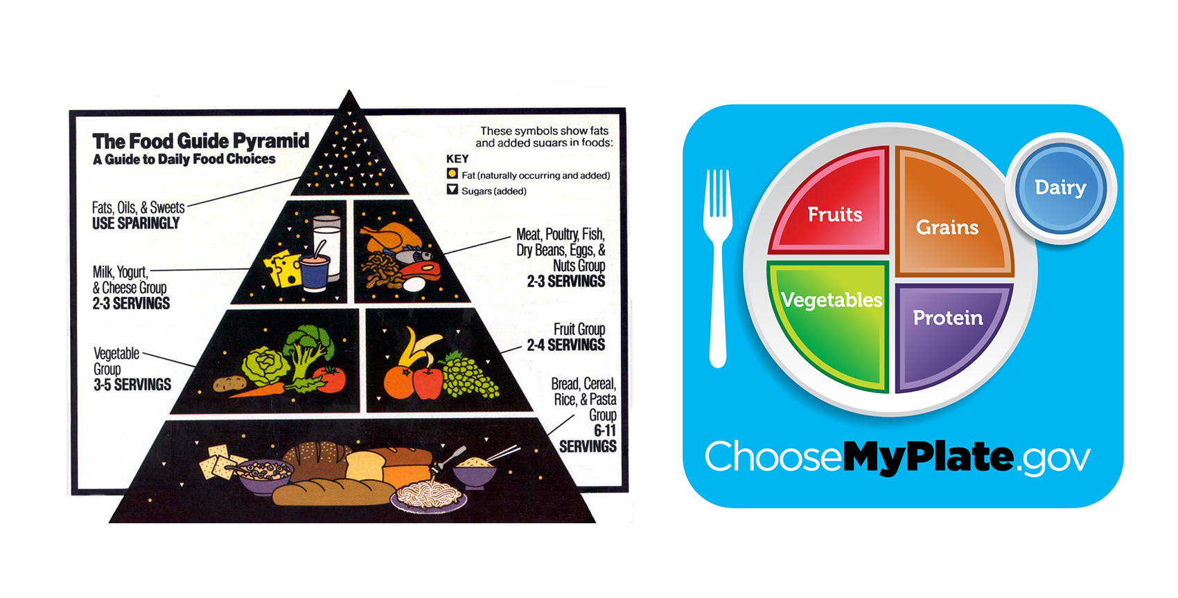 Replacing The Food Pyramid With Myplate Part 2