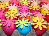 Daisy-Eggs-009