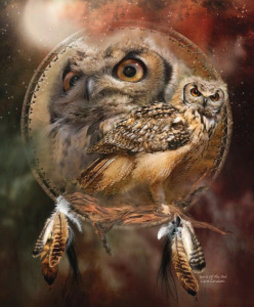 dream-catcher--spirit-of-the-owl-carol-cavalaris