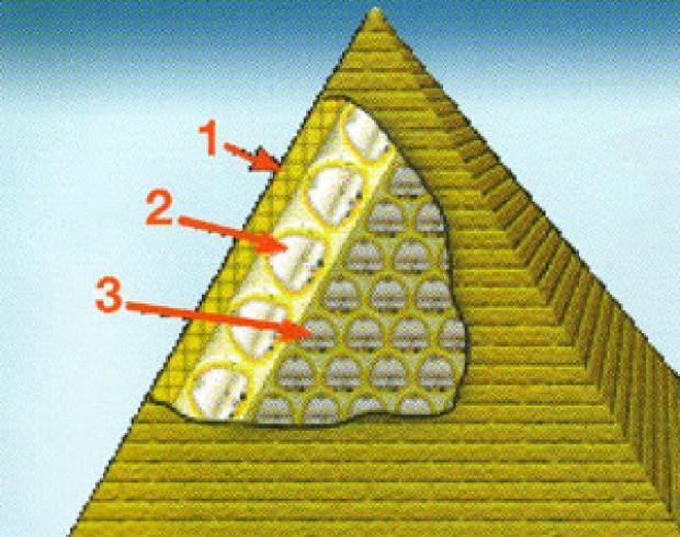 Conspiracy Feeds (4)