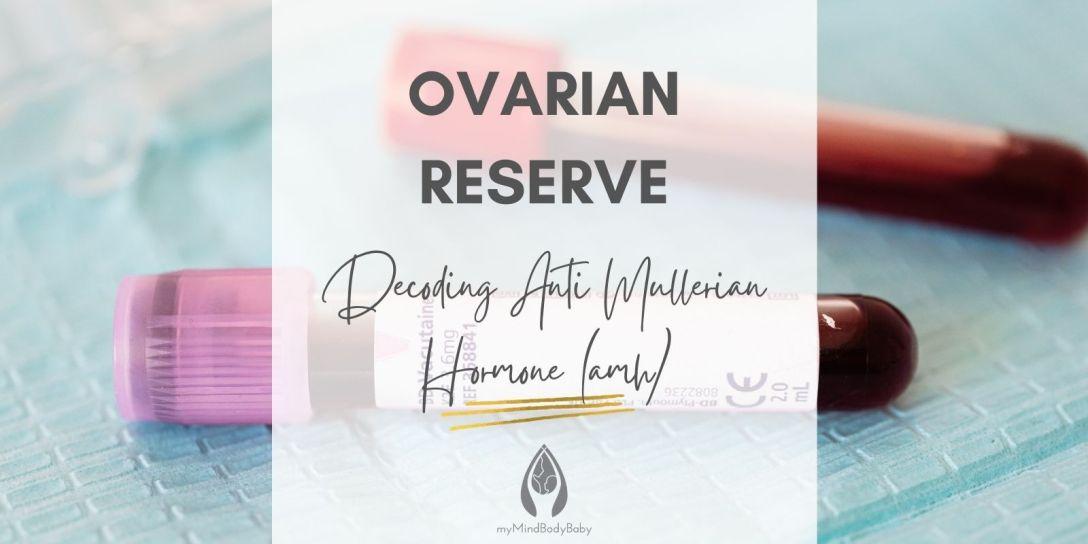 Ovarian Reserve Decoding Anti Mullerian Hormone AMH