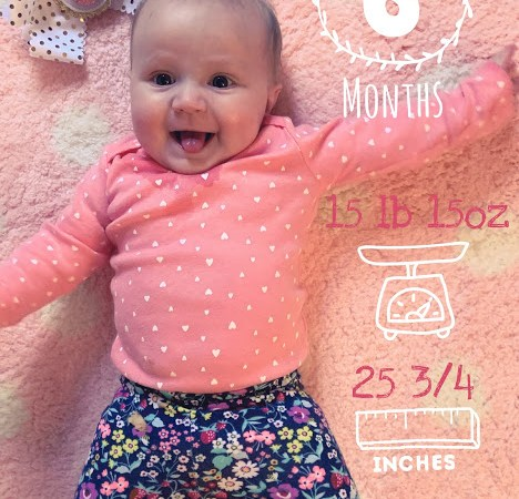 Riley is 6 Months Old!