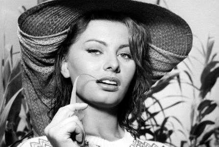 Sophia Loren Wallpapers @ go4celebrity.com