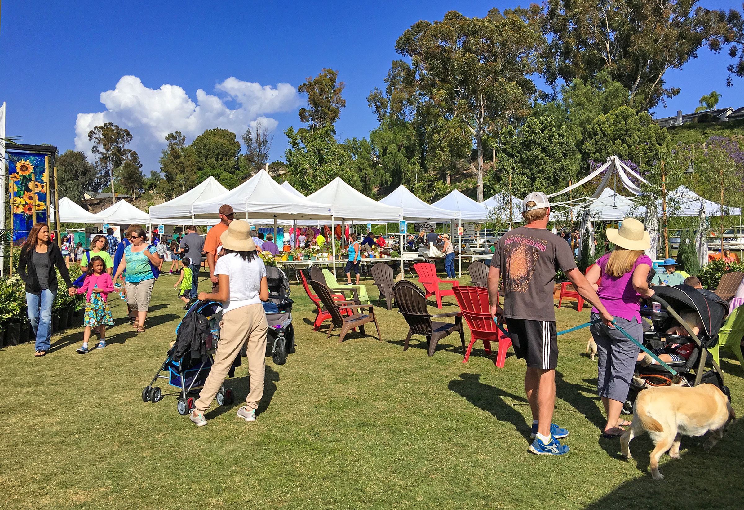 Community for All to Enjoy in Mission Viejo