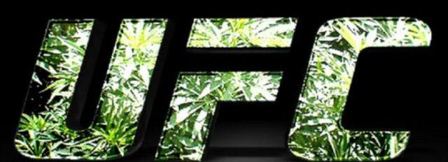 The NAC Agenda – Friday, January 13th – Marijuana and New Rules