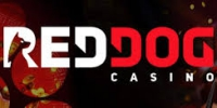 Red Dog Casino on smartphone