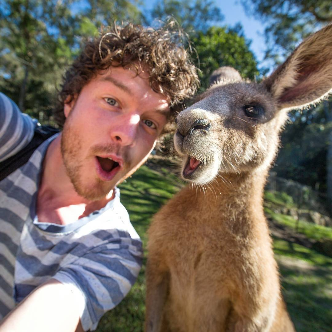 """Allan Dixon, the """"Animal Whisperer"""" who takes the best selfies"""