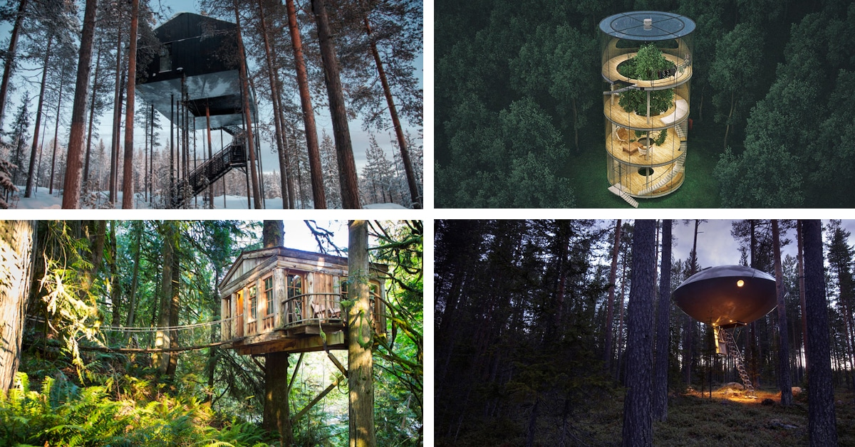 Treehouses For Grown Ups Prove You Re Never Too Old