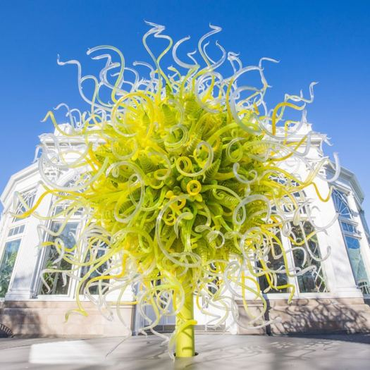 Chihuly Garden Exhibition New York Botanical Garden Chihuly Sculptures Botanical Garden