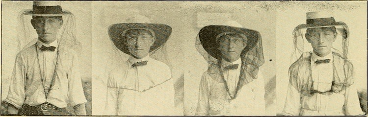 Early 20th Century Beekeepers