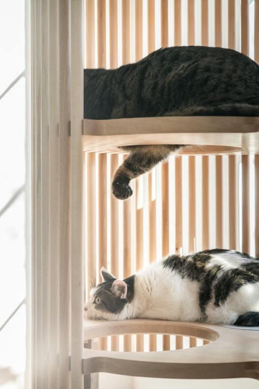 Minimalist Cat Furniture by Rinn