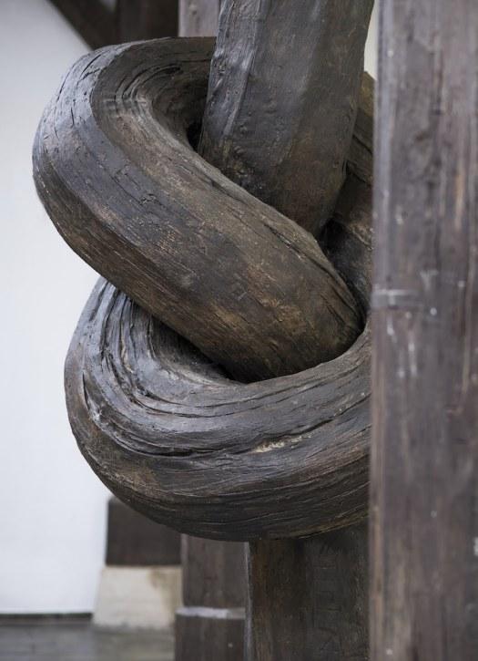 Alex Chinneck wood knot