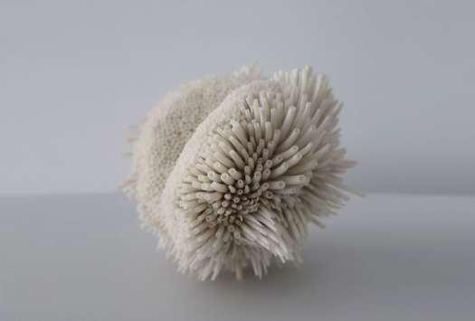 Seashell Sculptures by Rowan Mersh