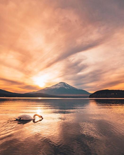 Photo of Mount Fuji by Hiro Goto