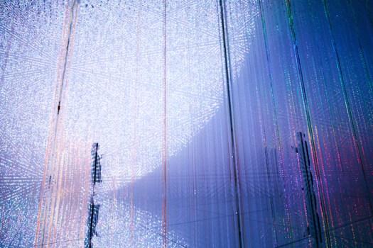 Digital Art Installation Art Body Immersive Exhibition Tokyo by teamLab