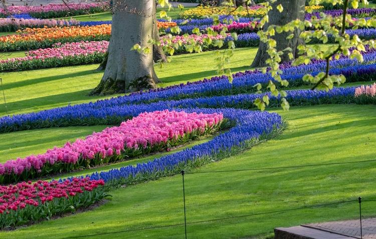 Keukenhof Garden in Lisse, Netherlands