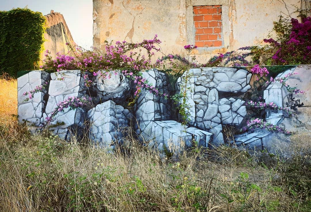 Vile Graffiti Optical Illusion