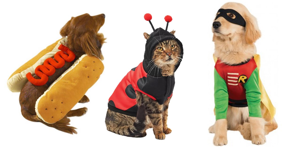 It'd be great for a mischievous duo who will more than likely be up to trouble when the ghosts and goblins come out in the evening. 25 Adorable Pet Halloween Costumes For Your Cats And Dogs