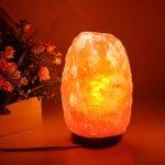 Natural Himalayan Glow Crystal Salt Lamp With Wood Base