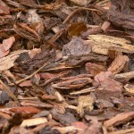 Bark Mulch 958416 640