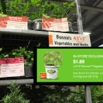Bonie Plants At Home Depot