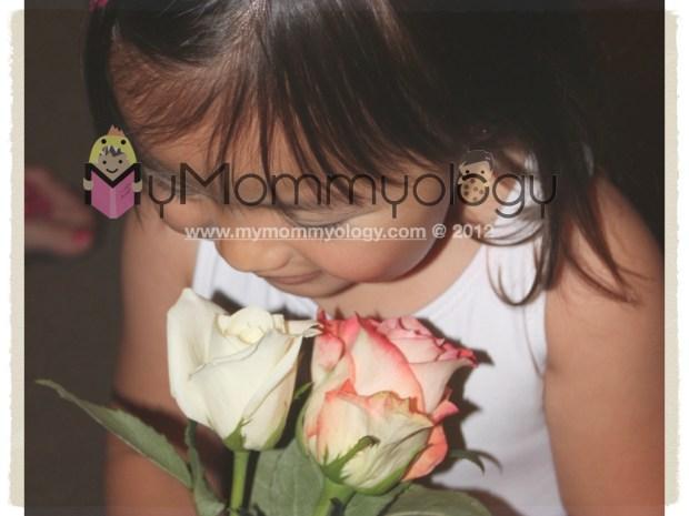 My Mommyology Roses for the Ballerina