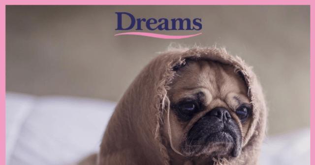 www.dreams-pillowtalk.com