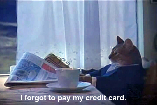 what to do if you forget to pay your credit card