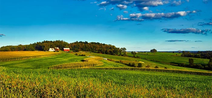 generating income through farmland investments