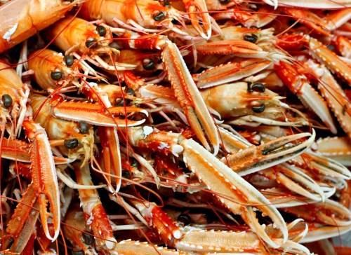 seafood-supper-1172x856