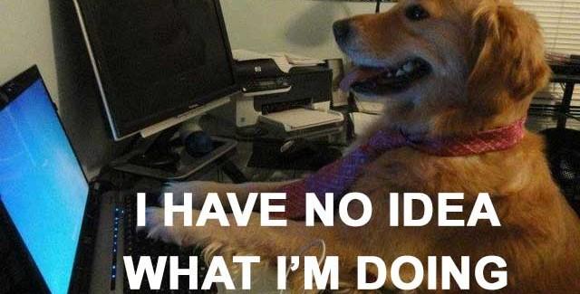 dog-no-idea-640x325