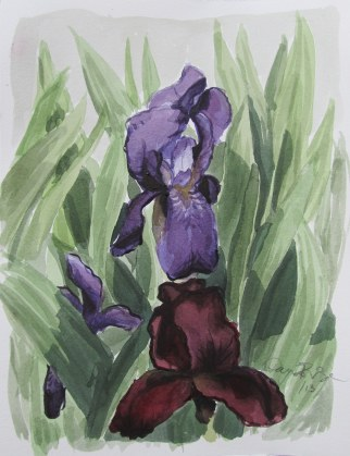 Irises, Jun. 2013, watercolour on paper 9 x 12