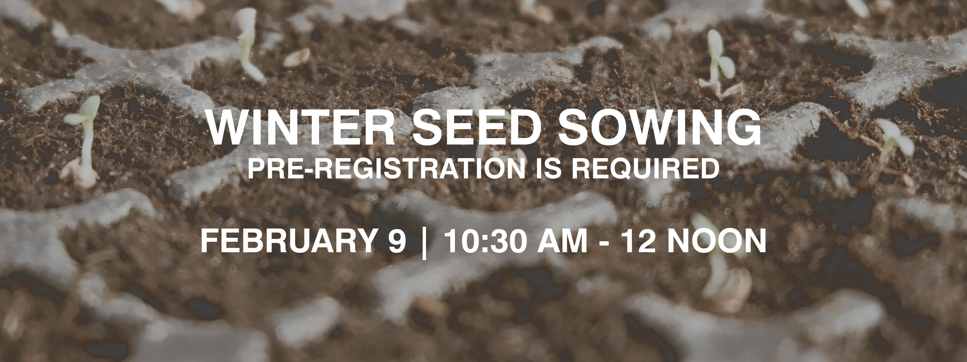 Winter Seed Sowing Workshop