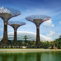 Nature walk at Gardens by The Bay