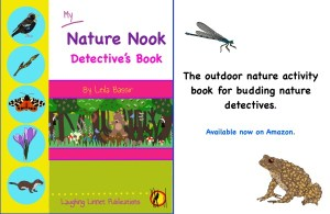 nature nook detectives