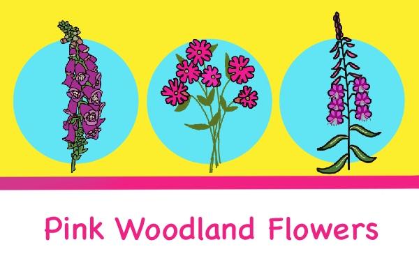 pink woodland flowers
