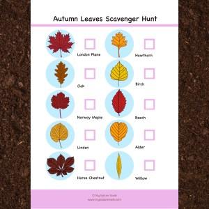 autumn leaves scavenger hunt