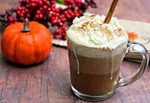 pumpkin spice and all things nice!